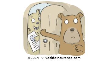 9liveslifeinsurance.com no pushy no selly